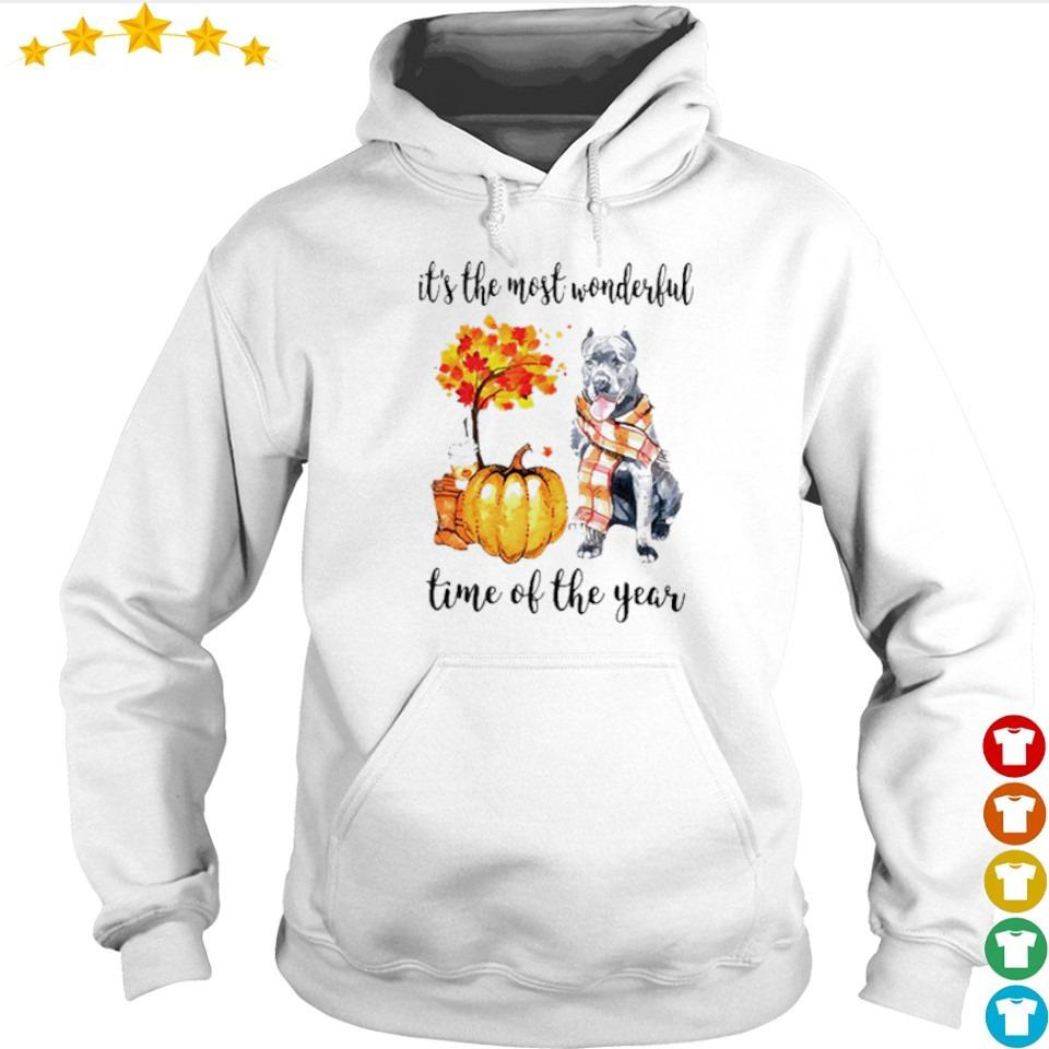 Pitbull Fall pumpkin it's the most wonderful time of the year s hoodie